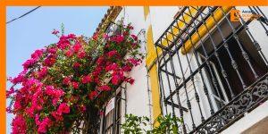 Crisis del Coronavirus cambia mirada en compra de viviendas