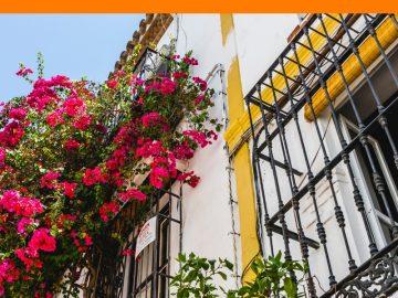 Viviendas en España